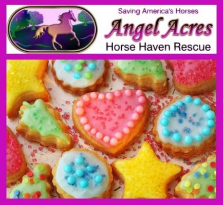 Angel Acres Super Scrumptious Cookie Recipes!