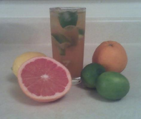 5 Fruit Citrus Iced Tea