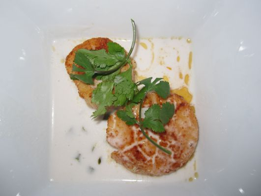Scallops with Coconut Broth