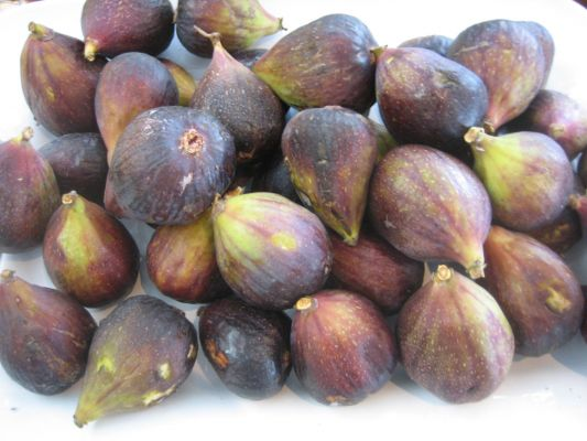 My favorite summertime treat: figs!