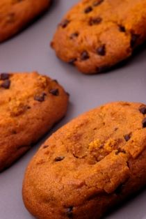 Angel Acres Yummy Pumpkin W/ Chocolate Chips Cookie Recipe