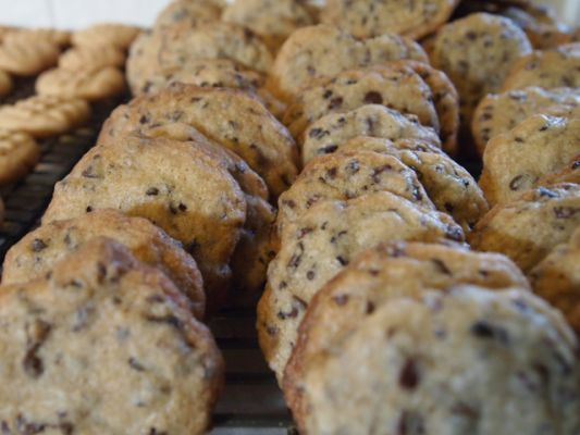 Chocolate Chip Cookies with Cocoa Nibs