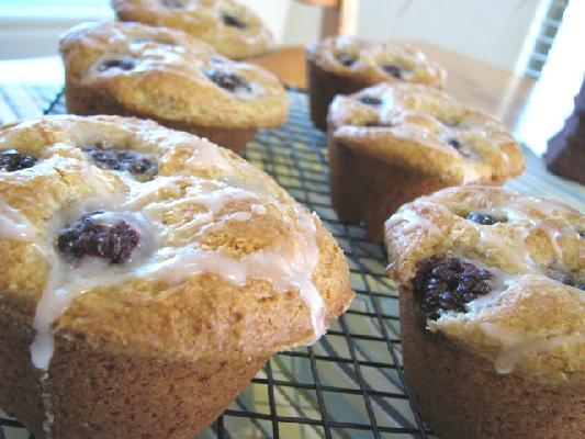 Blackberry Cream Cheese Muffins with a Sweet Berry Drizzle