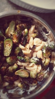 Cheesy Shells with Roasted Brussel Sprouts