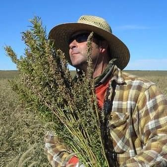 Derek Cross, Out Picking Breakfast from the First Hemp Crop in America for over 56 years. I enjoy bringing Industrial Hemp back to the Tables of America!