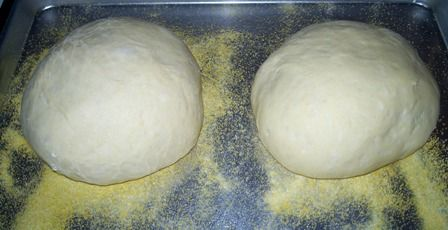 Sour Dough Bread Dough