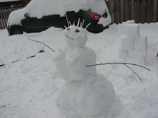My snowwoman I made this winter!