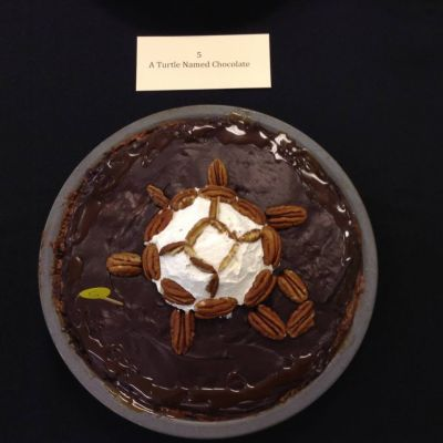 A Turtle Named Chocolate by Angeliki Vassilatos