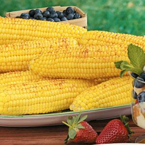 Grill Roasted Corn on the Cob