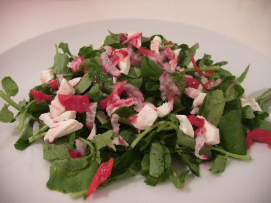 Watercress Salad with Blueberry Vinaigrette