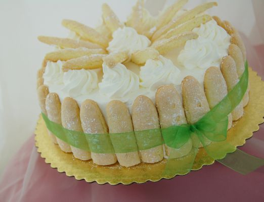 chiffon and lady finger cake