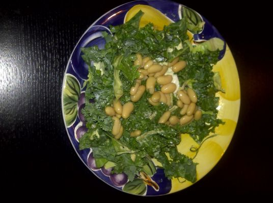 The Trendy Vegan Kale and Cannelini Bean Salad