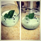 Guiltless Mint Chocolate Chip Ice Cream