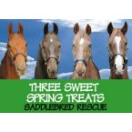 Three Sweet Spring Treats from Saddlebred Rescue, Inc.