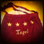 ~^Angel's^~ Cinnamon Tortilla Chips