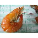 BP Gulf Shrimps in Oil