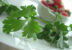 Fresh and Simple Pico de Gallo