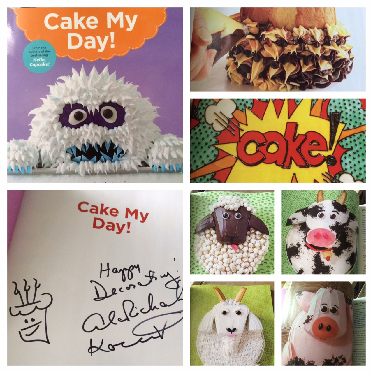 Cake my day book